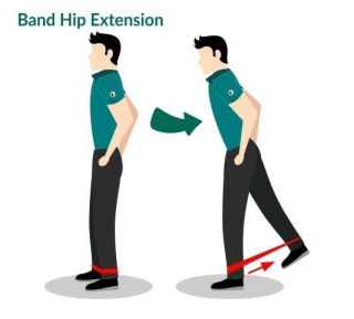 Hip Extension Image