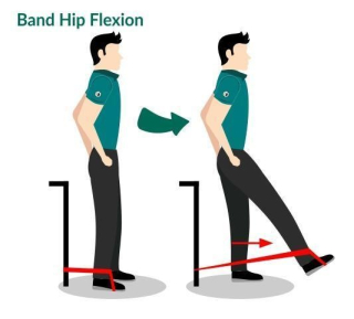 Hip Flexion Image
