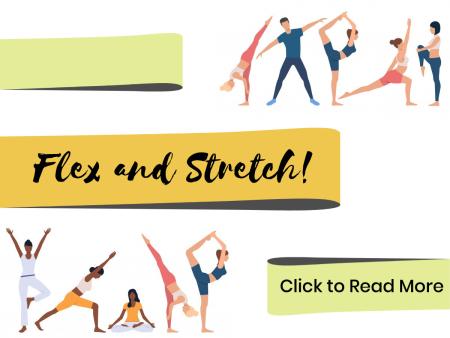 Flex and Stretch Cover Image